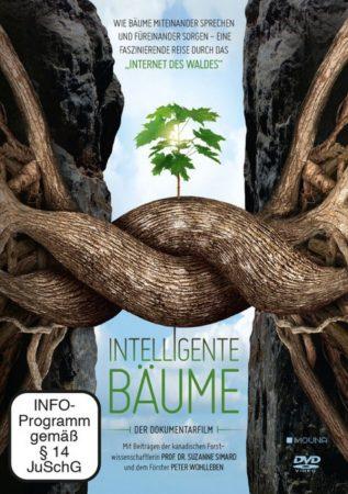 Intelligente Baueme Cover